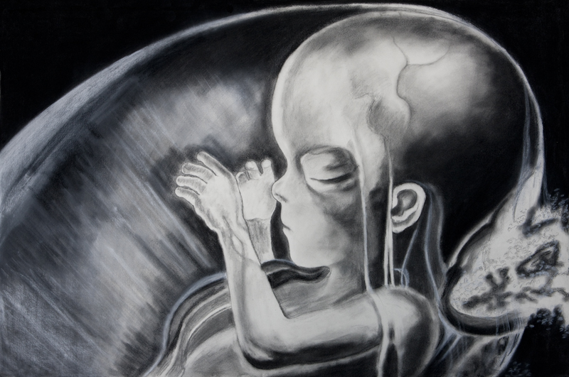 Lo siento, mi vida(II) / My Darling, My Life (II). Charcoal and pencil on paper, 2012
