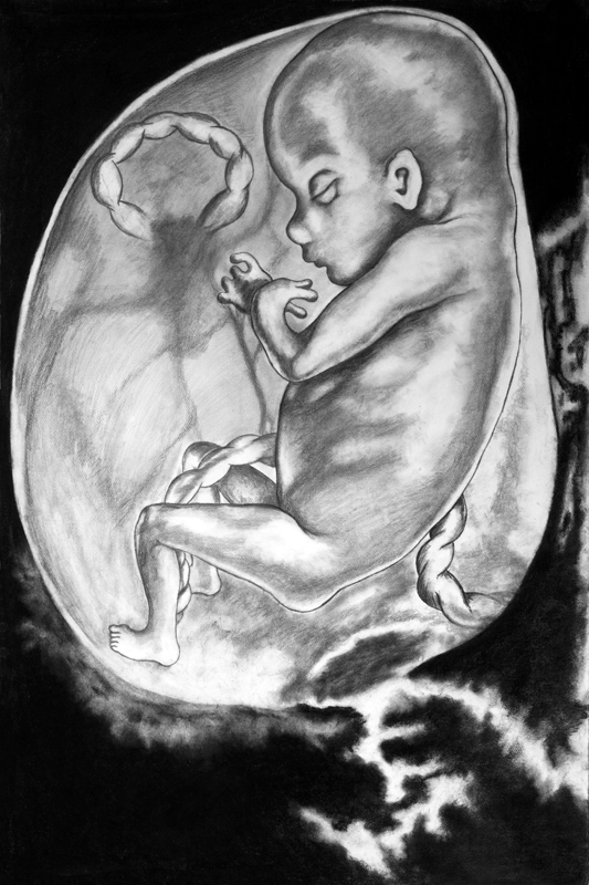 Lo siento, mi vida(I) / My Darling, My Life (I). Charcoal and pencil on paper, 2012